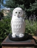 See Through Other Eyes: Spotted Owl, sculpture by Ellen Woodbury