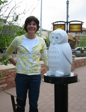 """See Through Other Eyes: Spotted Owl"" at The Vistas, Park Meadows Retail Resort, Lone Tree"